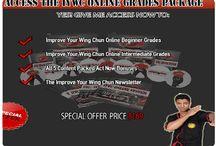 kung fu training DVD