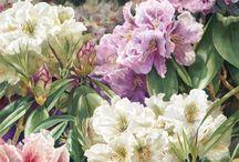 flowers painting/ tableau floral / painting / peinture