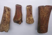 MY PREHISTORIC TOOLS COLLECTION / Archeology. Private Collection Found Stone Tools