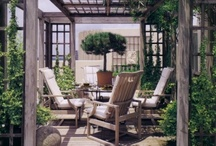gardening  and backyard finds / by Anne Sweeney