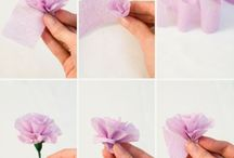 fleurs creation
