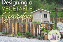 Gardens / Garden design ideas, vegetable gardening, herbs, flowers, etc.