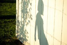 Shadows / by Catherine Bonser