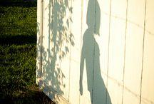 ✒ Shadow
