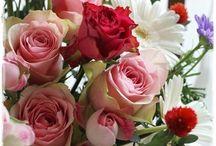 【ボルドー&赤】生花ギフト / Flower noteの生花ギフトアレンジの ボルドー&赤のギャラリーです