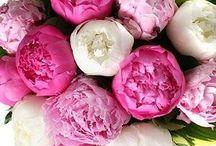 Flowers make me happy :)