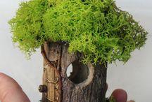 miniaturna záhrada