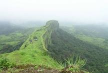 Through My Cam Lens / Mahabaleshwar, Sahyadri Range, Western Ghats, Sunset, Pench Tiger Reserve, Safari, Fort, Forest, Trees / by Ajit Moghe
