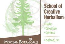Morgan Botanicals School of Creative Herbalism