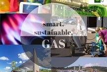 Smart.Sustainable.GAS / SMART.SUSTAINABLE.Design.Living.  Information, social network and market place. Design, development and remodelling with smart & sustainable technologies
