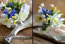 Flowers / by Melinda Hopkins-Wabick