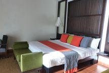Surprising Sri Lanka / Excellent value Indian Ocean destination with good hotels and great service, colonial history and rainforest  / by Cathie O'Dea