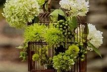 Bird Cage Decor /  Decorative birdcages come in a wide variety of sizes and styles. Whether they are vintage birdcages or large Victorian aviaries, they can be used to add a striking focal point to your home.