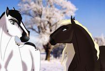 Meu cavalo para decidir