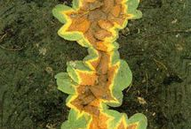 ANDY GOLDSWORTHY / Imaginative outdoor art