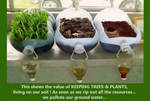 Soil erosion / Education