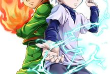 Hunter x hunter(anime?)