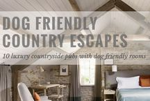 Dog Friendly places to Eat & Stay in the West Country