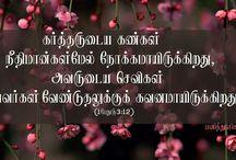 tamil lovies