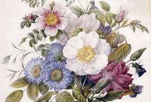 getekende bloemen