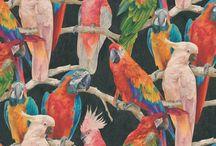 AI - Papier peint oiseaux