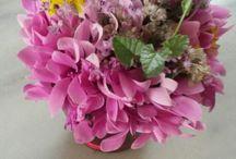 Flower bouquets__