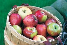 Fruit, fruit, and more fruit / We grow organic peaches, apples, pears, and more!  Here are some fruit ideas and more.