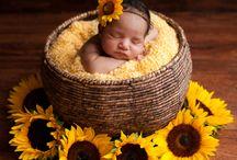 Baby photoshoots