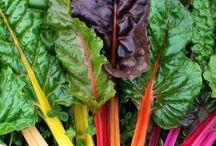 Salater / Grønt