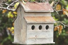 Bird Houses / by Laurie dill-Kocher