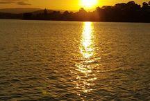 my back yard  nsw Australia