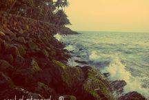 Amal Photography / Thorough my lenses