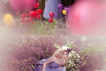 {Wedding} Alice in Weddingland