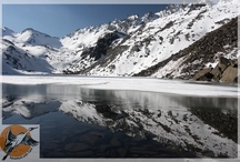 The Adventure Journey / The Adventure journey is the best travel solutions provider for Adventure Tours in India. We offer Trekking, river rafting, Mountaineering Expeditions many other adventure tours in India.