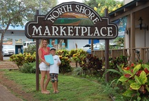 Seek Spot Oahu / FInd the best recommendations for Oahu's Activities Restaurants Shopping Guest Services Transportation Weddings and Events Explore, Discover, Experience Oahu, Hawaii with SeekSpot!