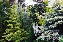 oo ogród Agani