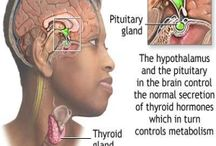 thyroid problems and solutions / natural cure for thyroid problems