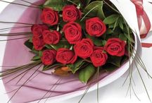 Valentine's Day Flowers / Elegant, classic and breathtakingly beautiful.  Interflora Roses remain among the most broadly popular flowers to give (and receive).  From the romance of the single red rose, to sumptuous, fragrant bouquets, Interflora roses are a gift that goes straight to the heart.