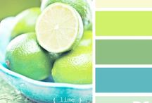 color crush {palettes} / by Lauren