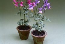 Dollhouse Plants