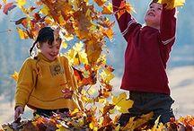 Fall Play