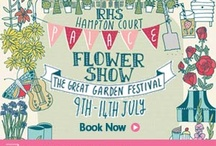 Hampton Court Flower  Show 2014 / Hampton Court Flower Show 2014 all photos taken by kidsinthegarden  / by Lynda Appuhamy kidsinthegarden.co.uk
