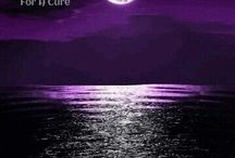 Epilepsy Awareness / Variety of things regarding Epilepsy from pictures, support, and education. / by Kickin It Purple