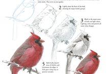 How to draw birds / Bird