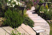 """beaux jardins / plantes vivaces-jardins vichy à visiter-production et vente directe-""""Les Jardins des Hurlevents """" http://www.plantes-vivaces-hurlevents.com/"""
