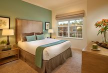 CLC Regal Oaks, USA / At Regal Oaks in Kissimmee, Florida, solidly built accommodation has modern interiors and comes fully equipped with many refinements for your comfort and holiday enjoyment. / by CLC World Resorts and Hotels