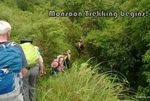 Kalypso Monsoon Trek / Check out this album for more pictures of our Monsoon Treks in Kerala #MonsoonTrekinIndia, # TrekKerala, #MonsoonTrek