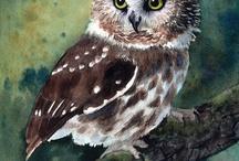 Owls ♡ / by Nicole Gerardi