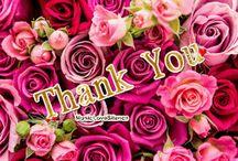 Grazie - Thank You