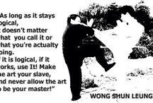 Wing Chun / null
